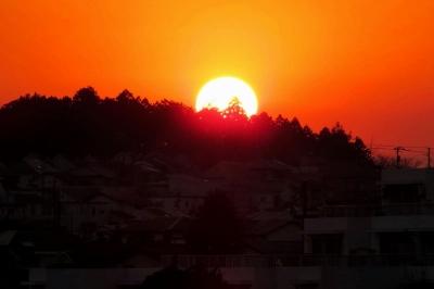 夕陽1_1