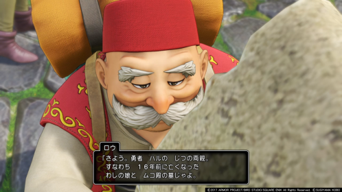 dq11 ss (13)