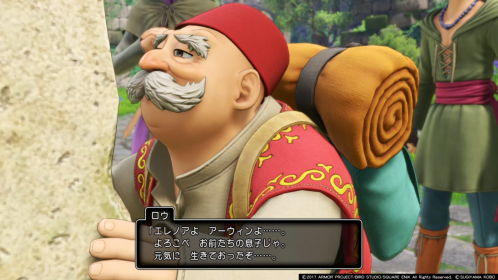dq11 ss (14)