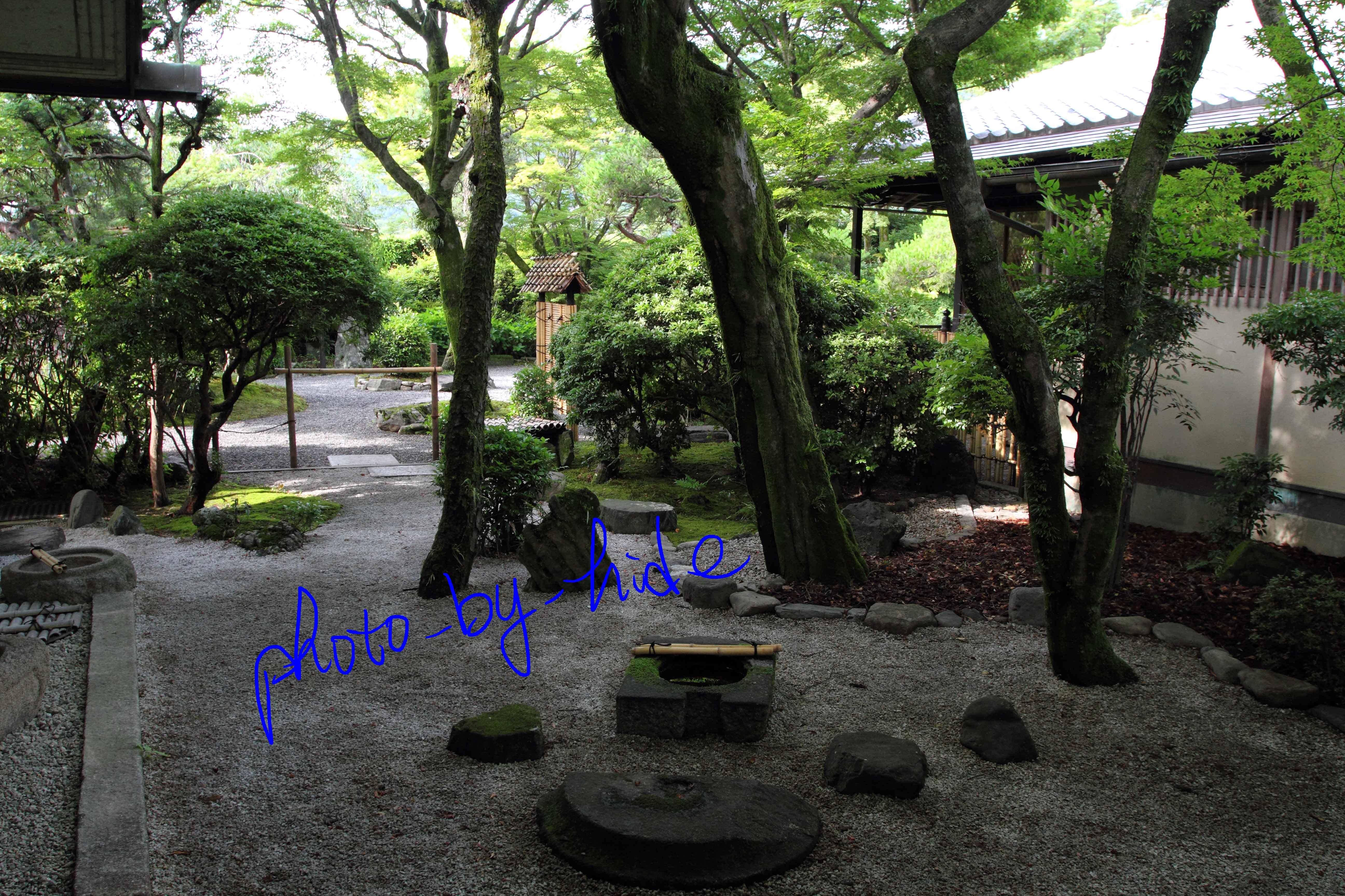 嵐山花の家中庭1