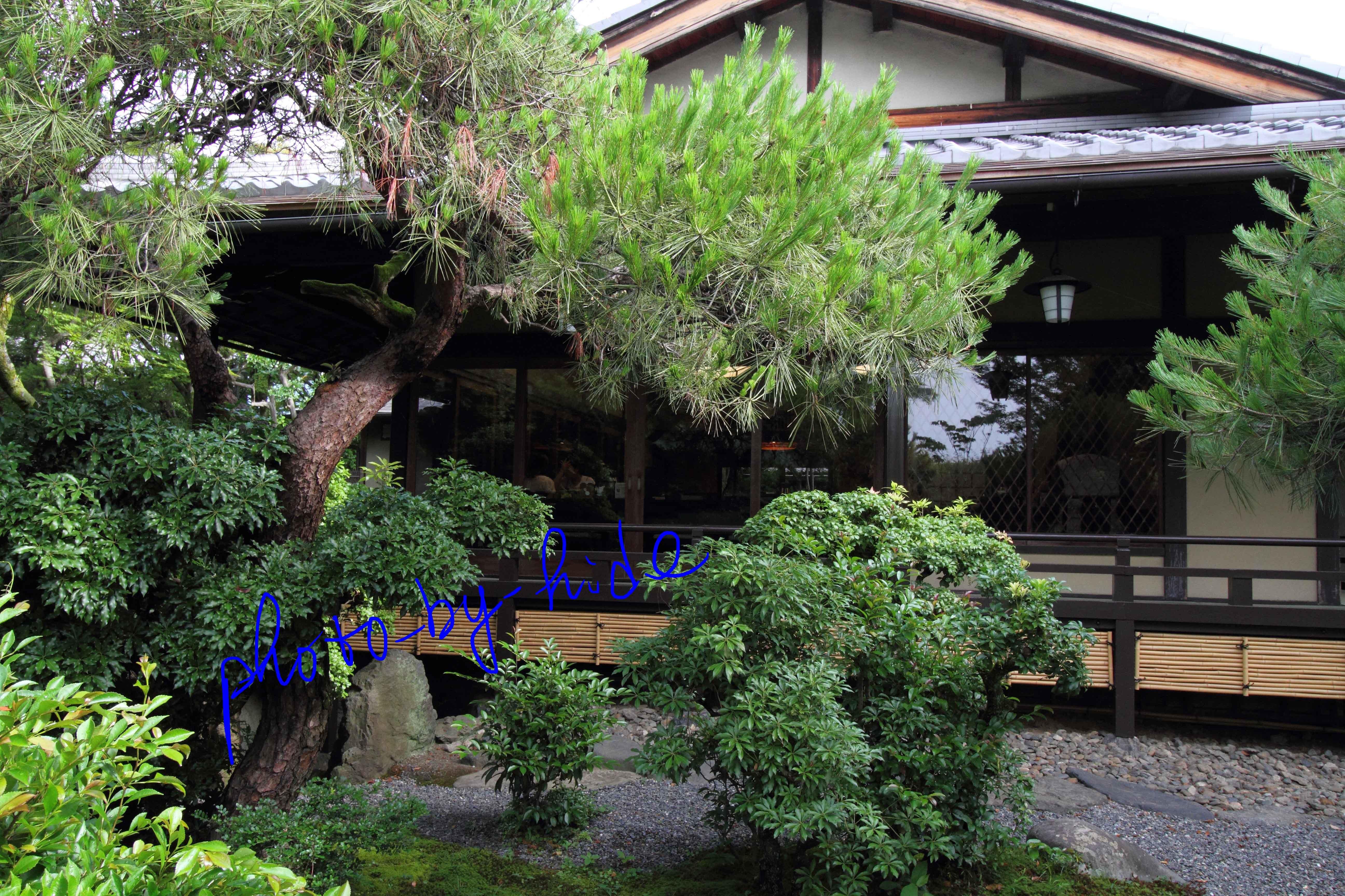 嵐山花の家中庭4