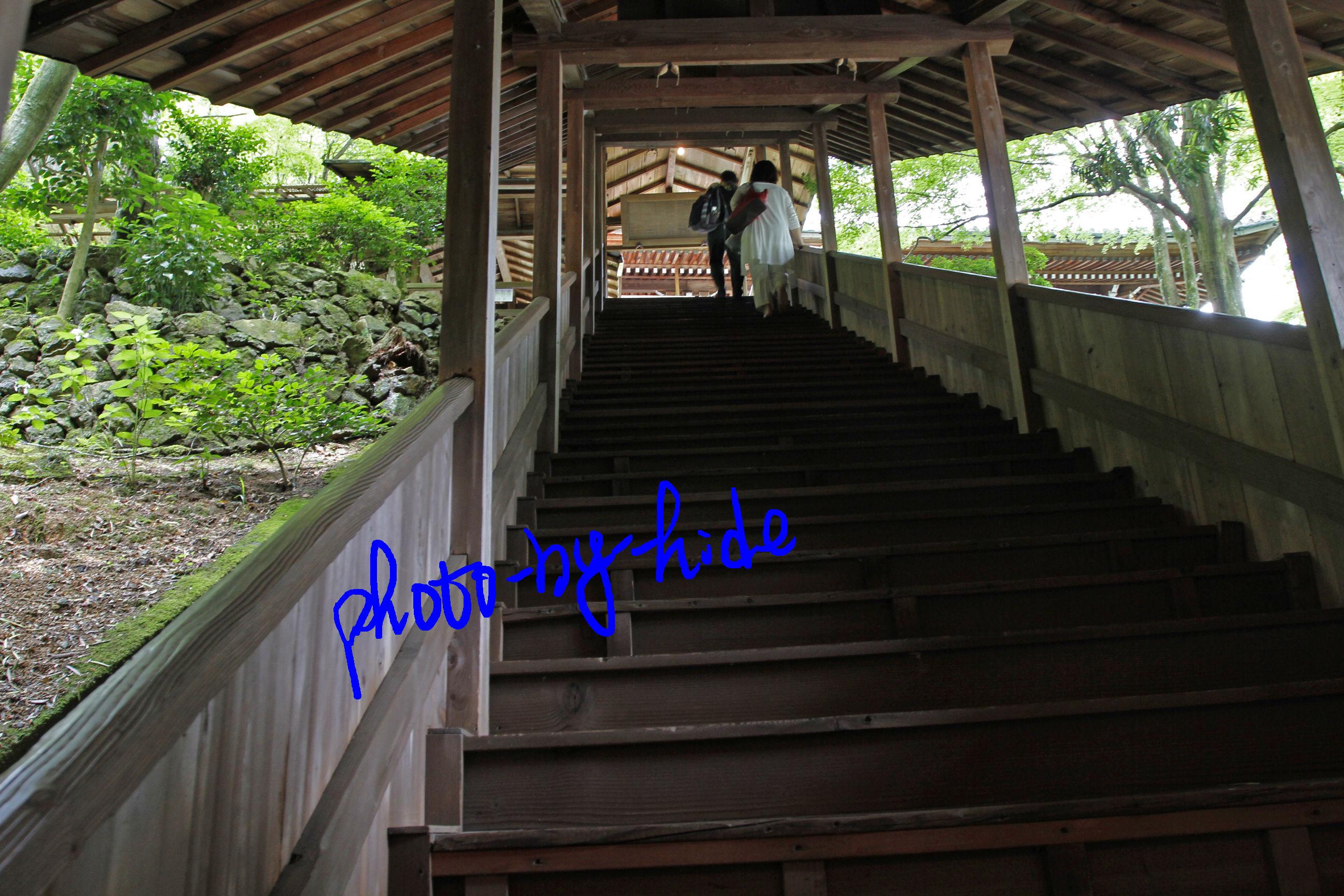 楊谷寺階段1