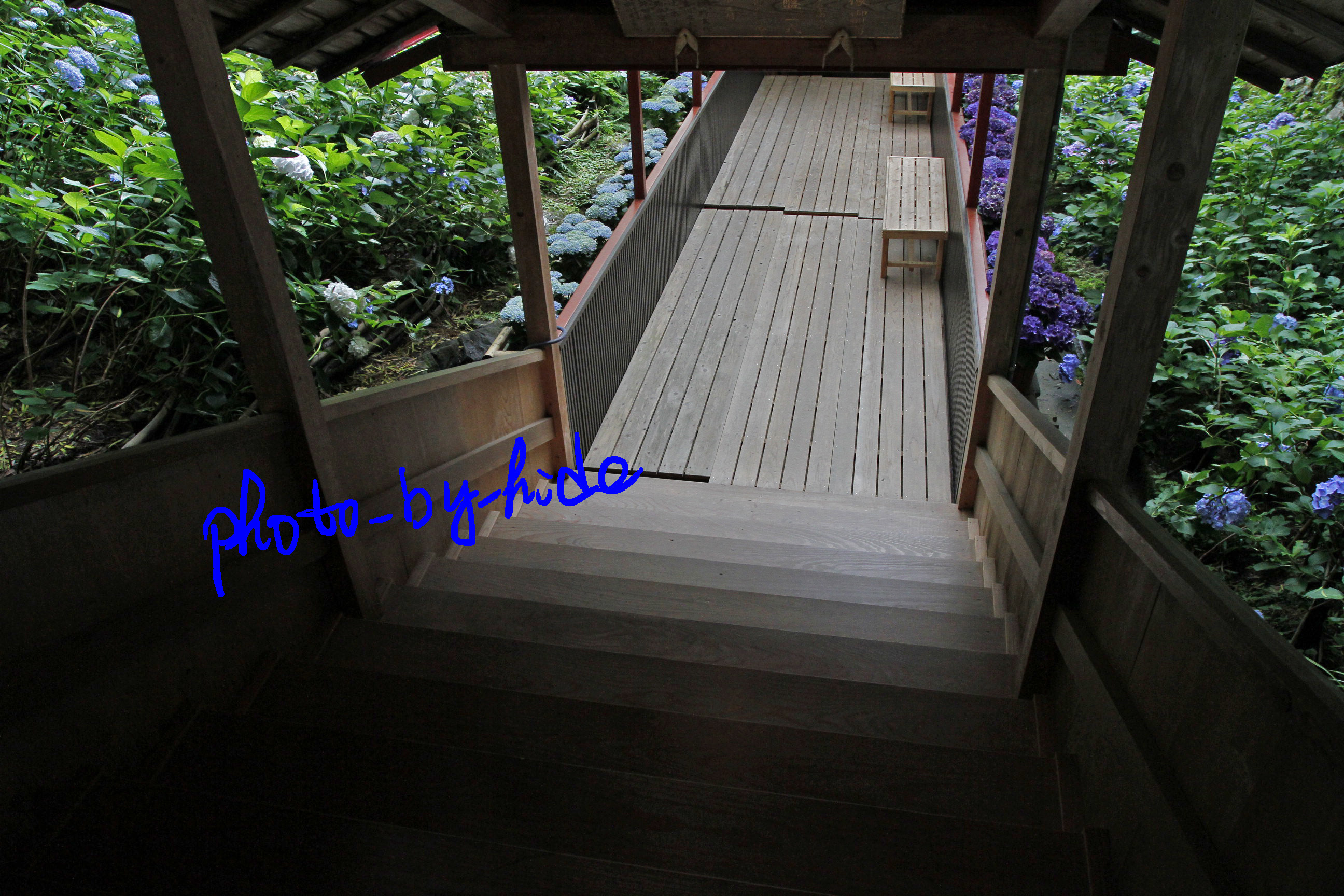 楊谷寺階段5
