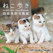 Neco_Iwago3.jpg