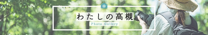 Watashi_no_Takatsuki2.jpg