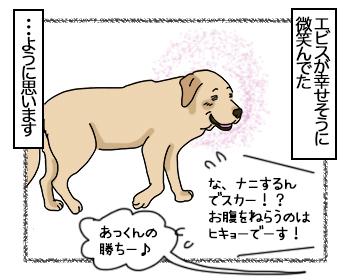 12072017_dog4mini.jpg