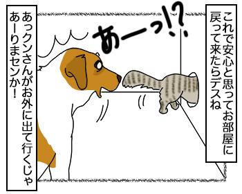 14092017_dog3.jpg