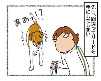 18092017_dog1.jpg