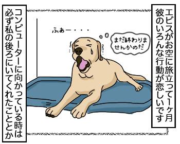 28082017_dog1.jpg