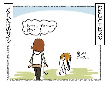 28082017_dog8.jpg
