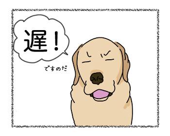 29082017_dog1mini.jpg