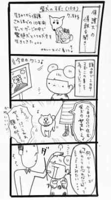 suzu034.jpg