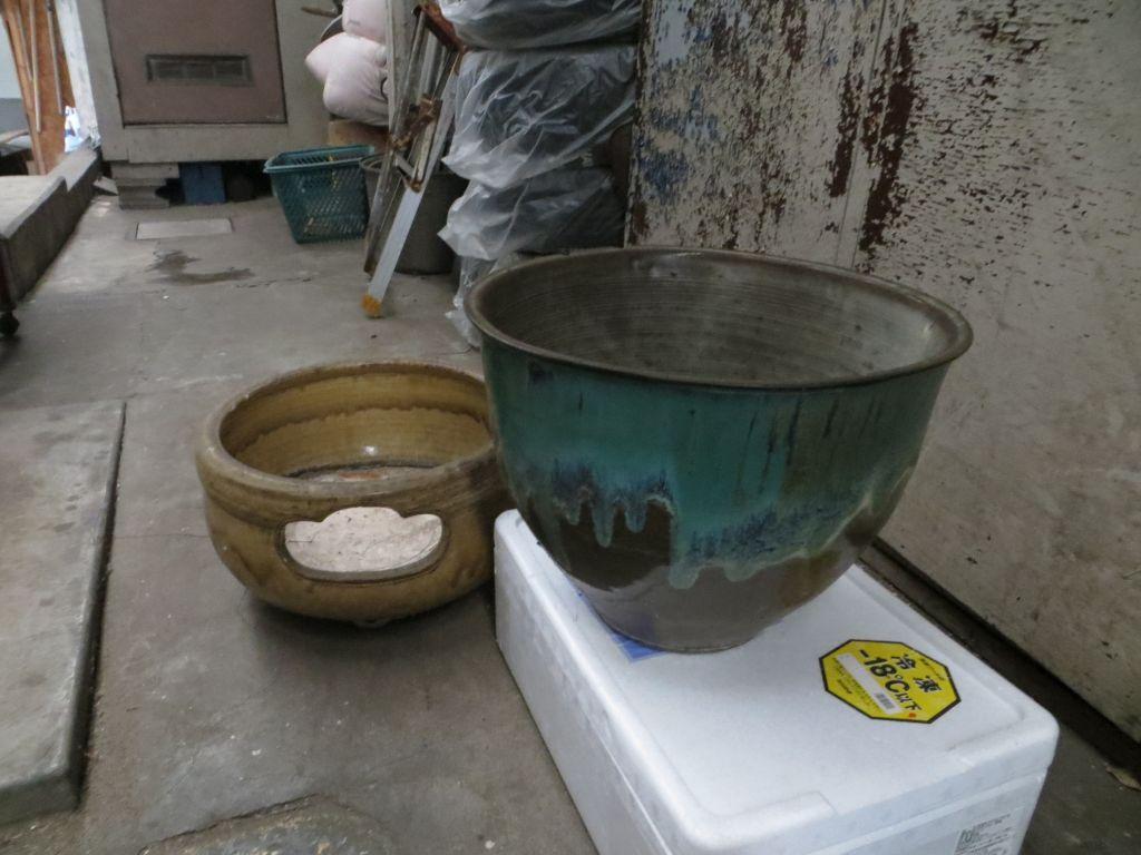 水鉢IMG_42711024