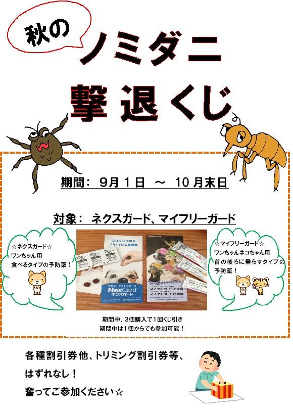 2017秋キャンペーン