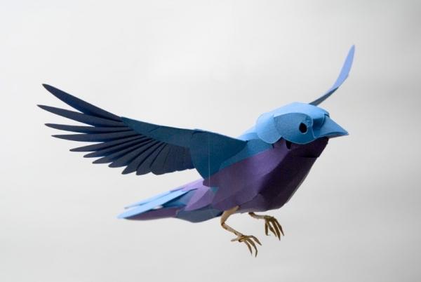 bird-1-600x402.jpg