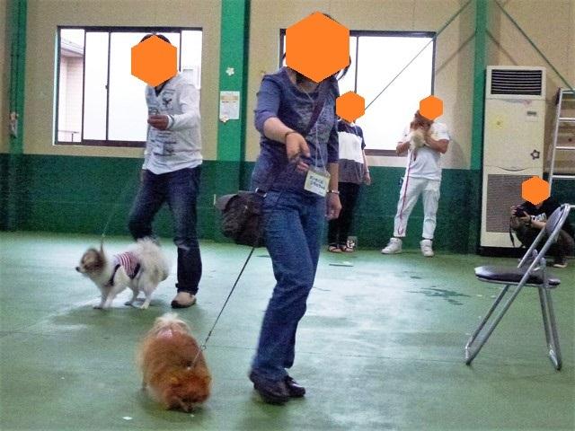 20170618ポンころオフ会⑰