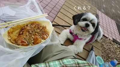 キャバマル 軽井沢