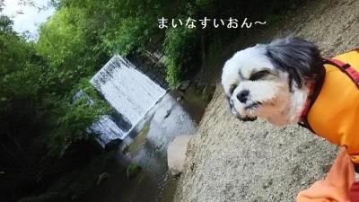 キャバマル 千ヶ滝