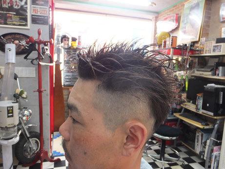 hair023.jpg