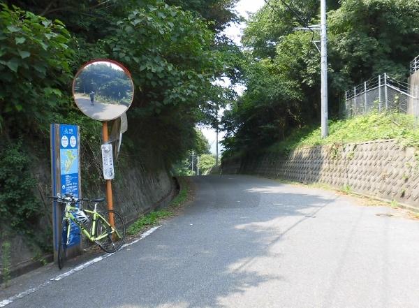 CIMG0701 下り道(600x441)