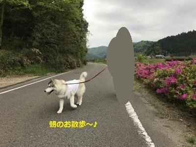 IMG_2165_convert_20170710234019.jpg