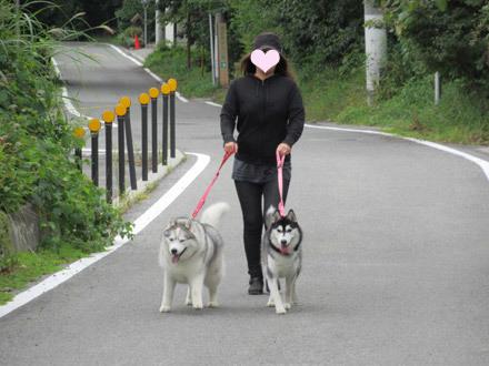 清里の朝散歩