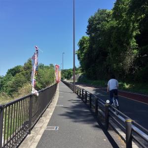 2017矢野口~稲田堤 (53)
