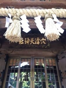 2017矢野口~稲田堤 (78)