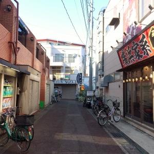 2017矢野口~稲田堤 (97)