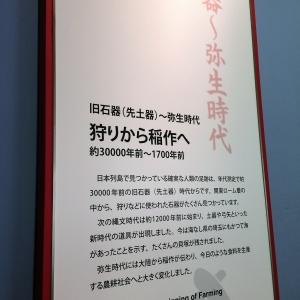 2017大宮 (82)