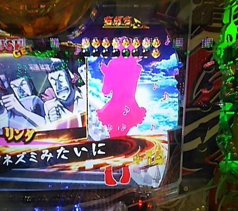 DSC_5578.jpg