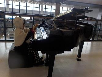 piano32917.jpg