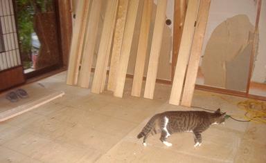 床の修繕3