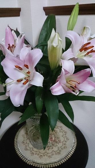お花for皆さん