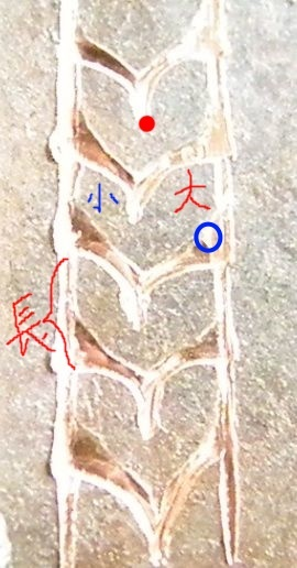 月桂樹 彫金アクセサリー3