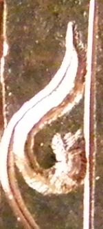 karakusa 彫金教室太い巻き