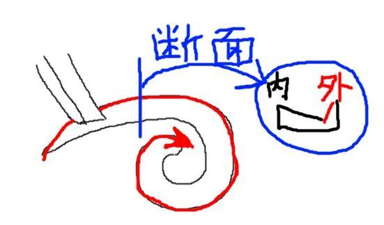 唐草 外巻きの図