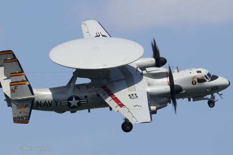 C-31.jpg