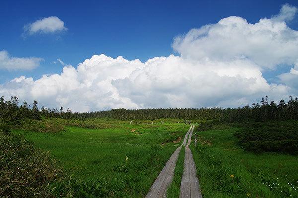 八幡沼の木道と入道雲