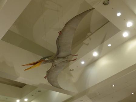 愛媛県総合科学博物館 恐竜 2