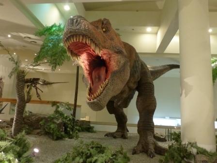 愛媛県総合科学博物館 恐竜 6