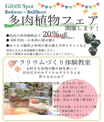 2017夏多肉フェアのお知らせブログ用