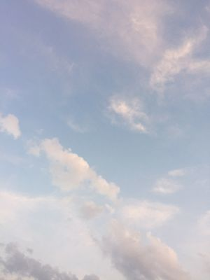 IMG_5149 空