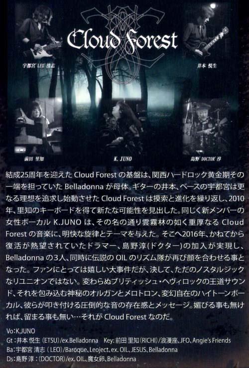 burn_up_the_castle_2017-cloud_forest_s.jpg