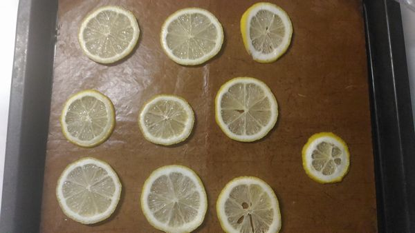 ドライレモン2