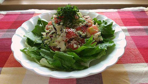 トマトときゅうりの豆腐サラダ