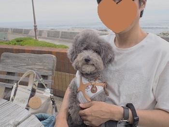 千倉ランチ20170624-9