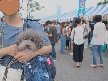 花火大会20170805-6