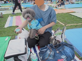 花火大会20170805-8