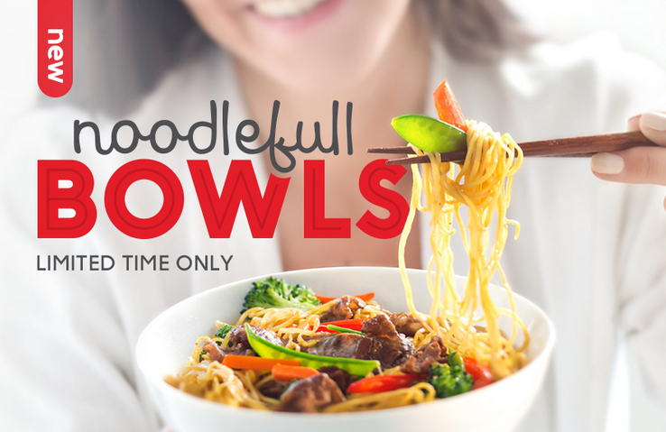 EDO JAPAN Noodlefull Bowl